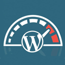 Wordpress akademija Optimizacija